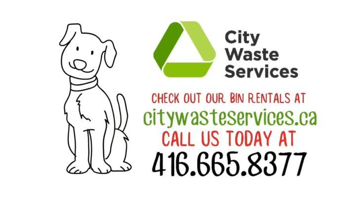 Garbage Bin Rentals - City Waste Services
